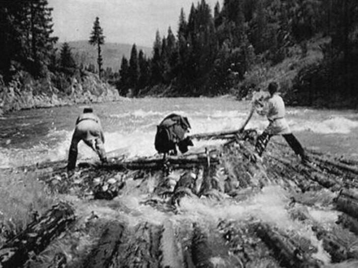 Унікальні кадри сплаву лісу на річці Тиса у 1950-х роках (ВІДЕО)