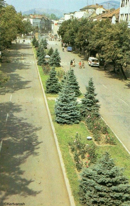 Вид на площу Леніна (тепер площа Кирила та Мефодія) в Мукачеві 1985.