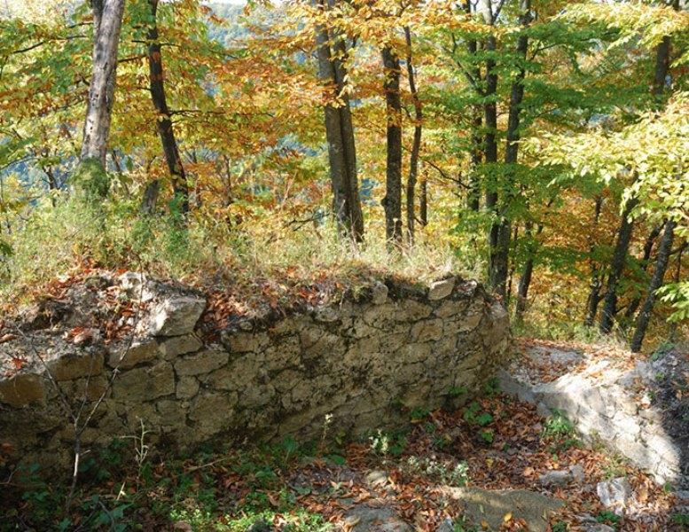 Руїни Бронецького замку